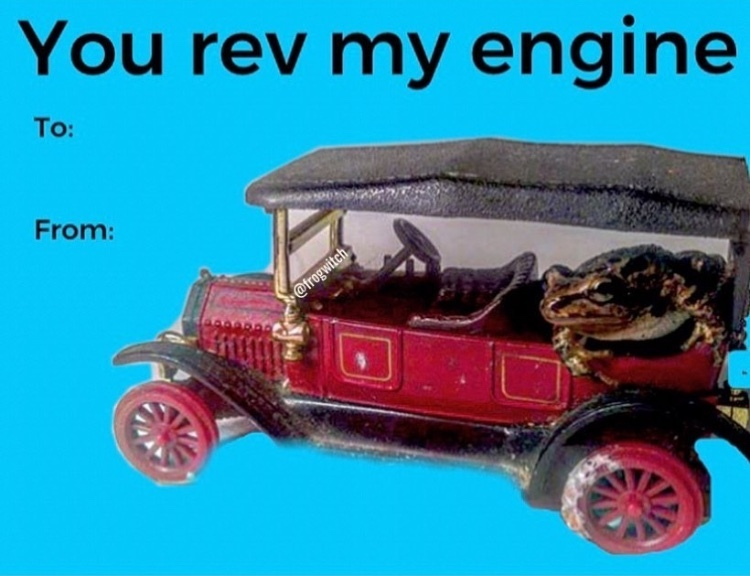 you rev my engine in my little frog car - meme