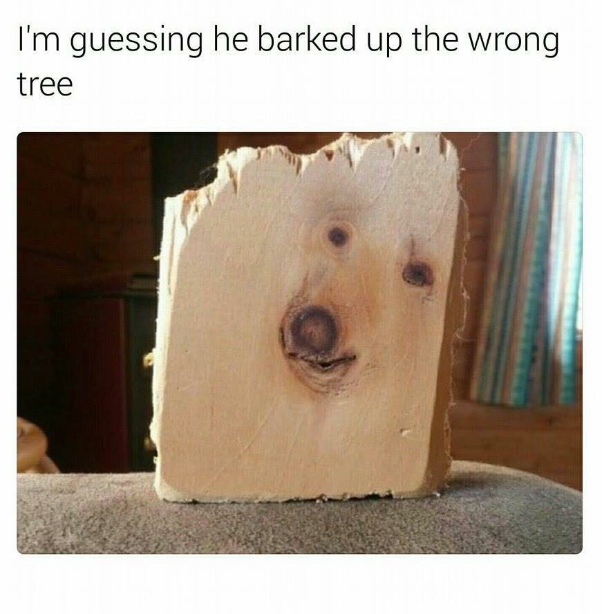 Tree Doggo - meme