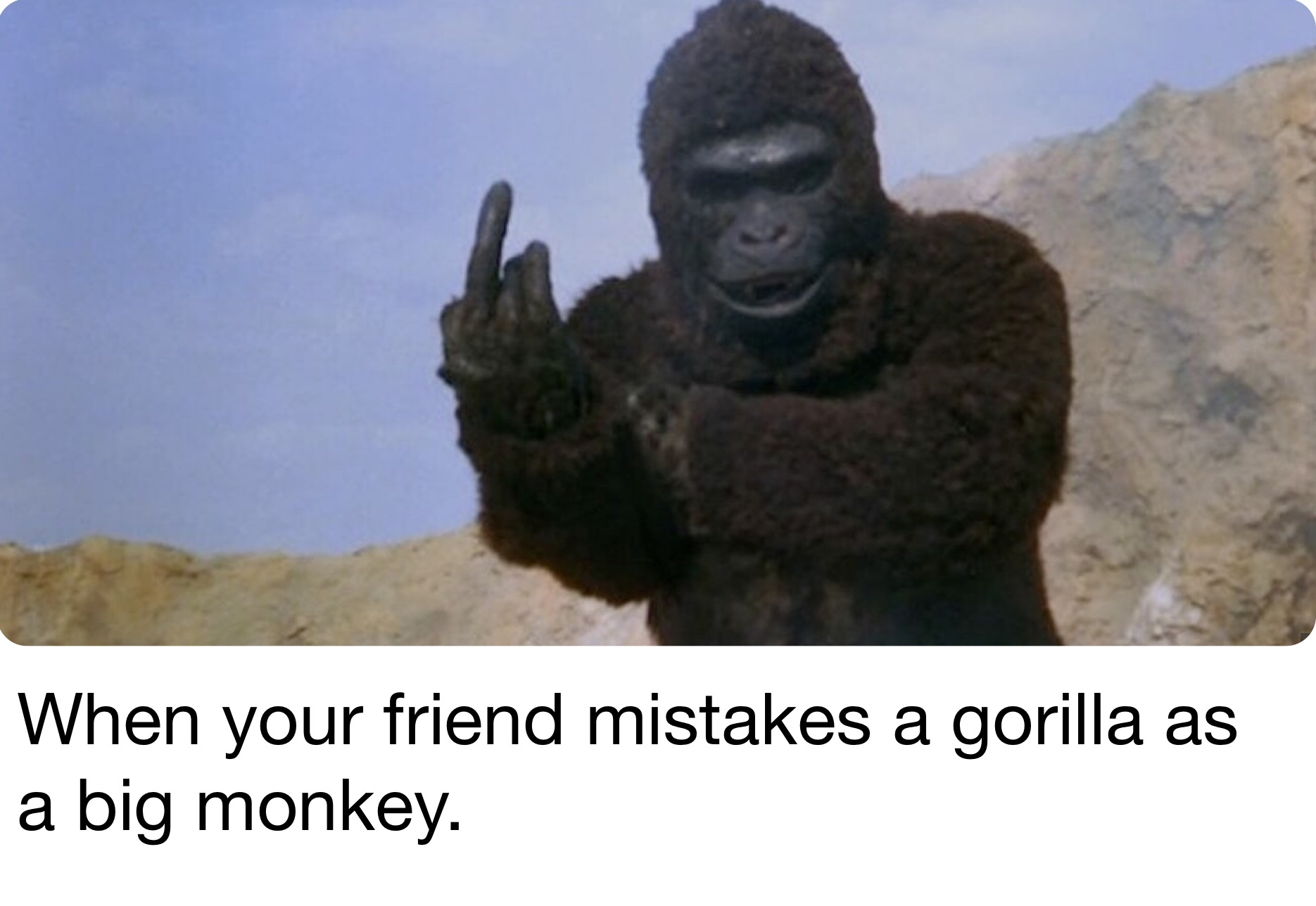 That's a big monkey - meme