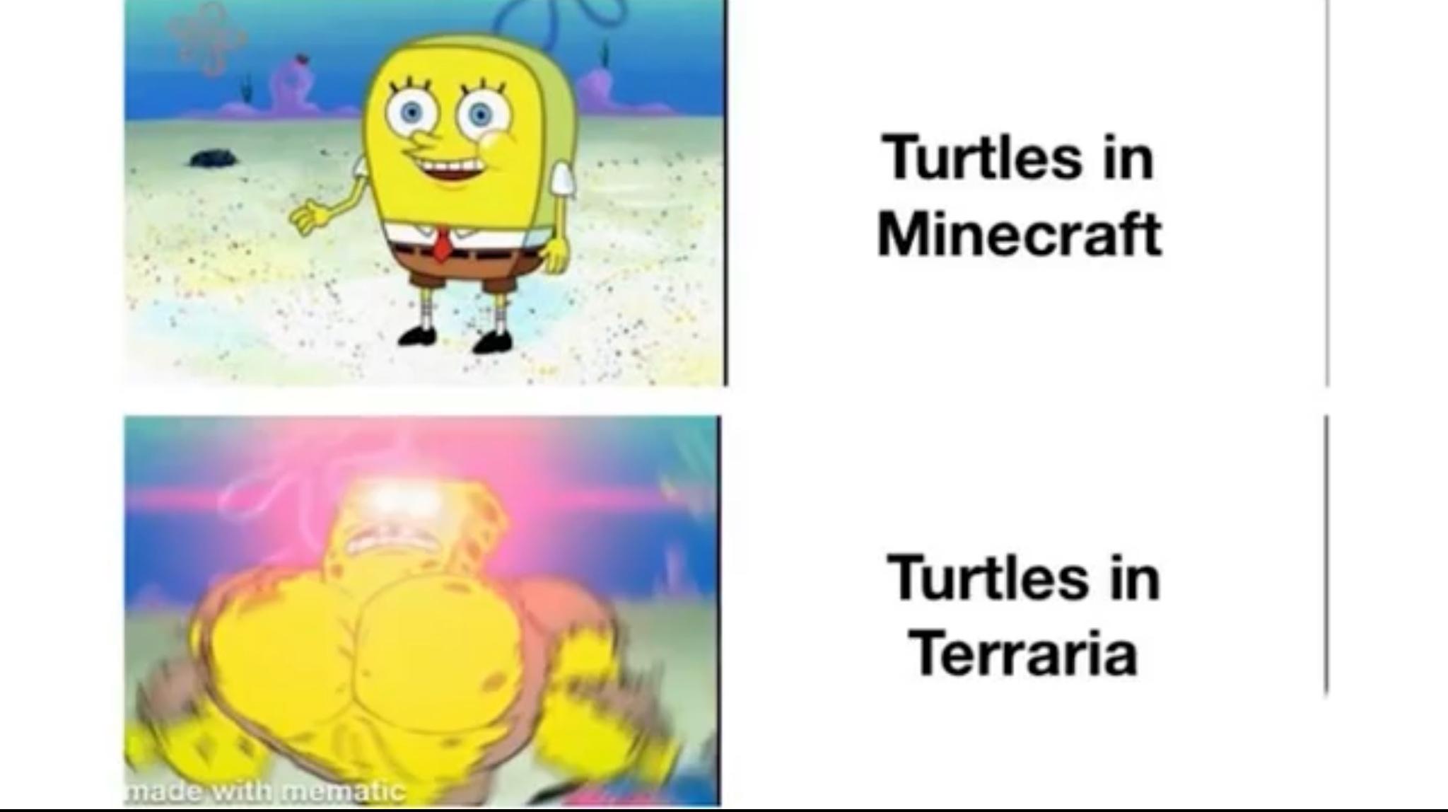 Minecraft and Terraria - meme