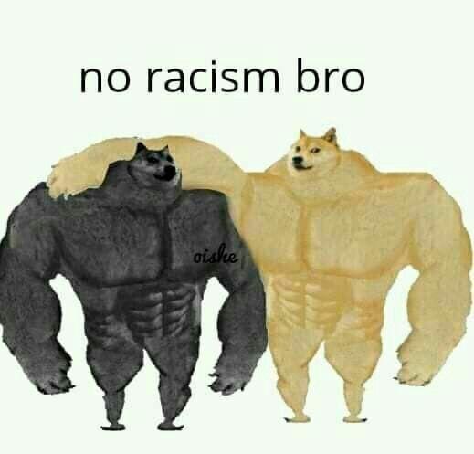 No racismo - meme