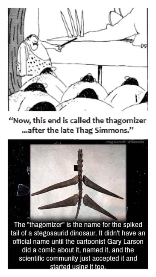 The Thagomizer - meme