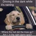 It's like driving thru a twister lol
