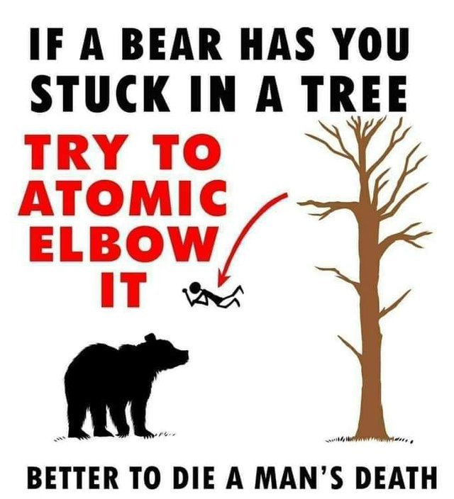 If a bear has you stuck in a tree try to atomic elbow it - meme