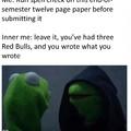 Evil Kermit End of Semester Essay