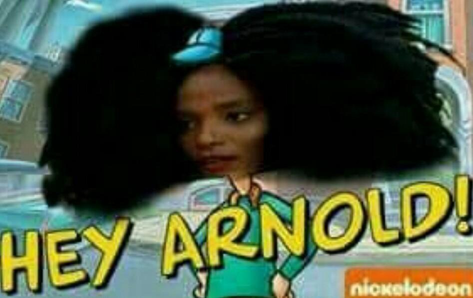 Hey Arnold - meme