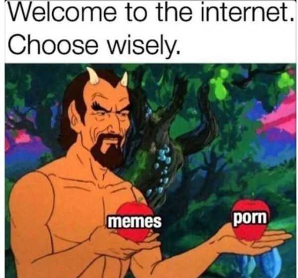 Welcome to the Internet: an awesome combination of memes and porn!