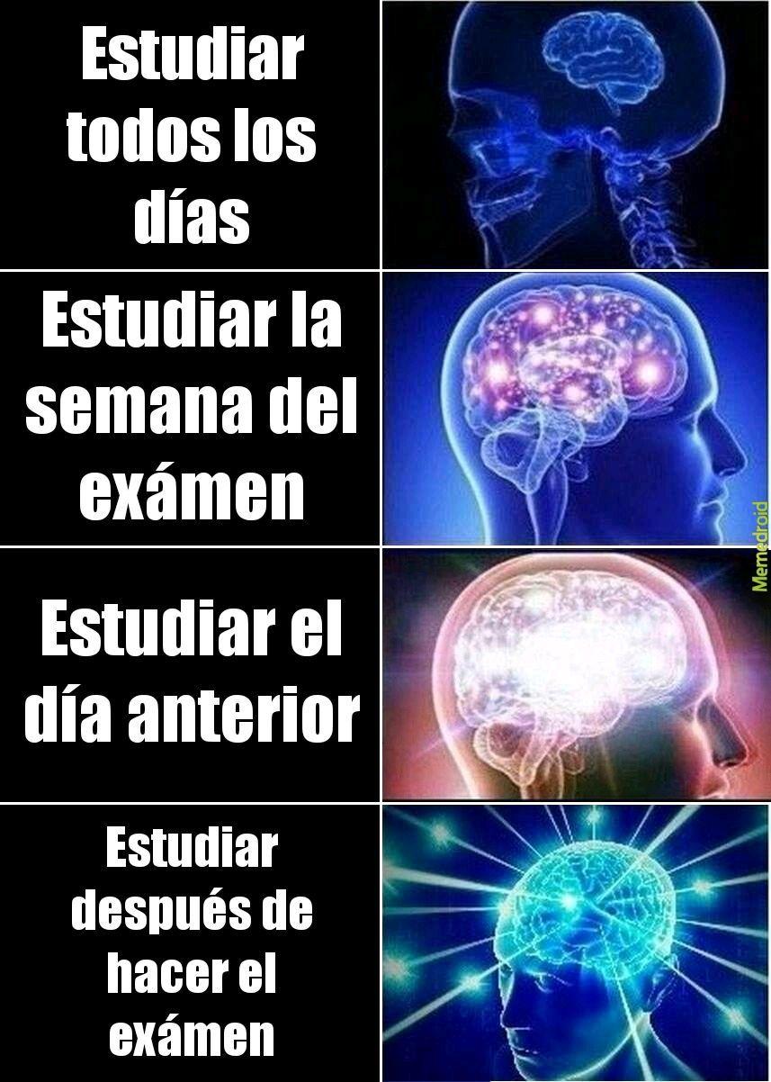 Las fases del estudio - meme
