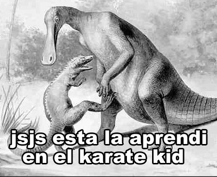 jsjs esta la aprendi en el karate kid - meme