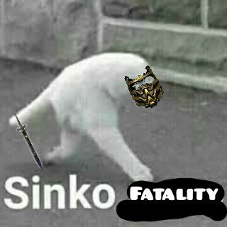 Sinko fatality - meme