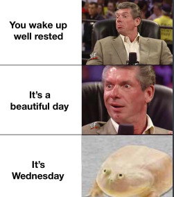 Its Wednesday my dudes - meme