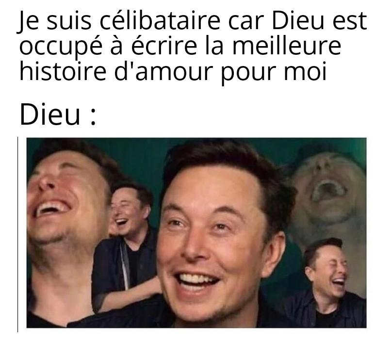 Elon *-* - meme