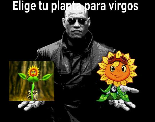 Conker - meme