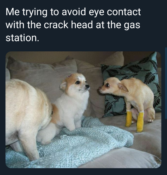 Me trying to avoid eye contact with the crack head at the gas station - meme
