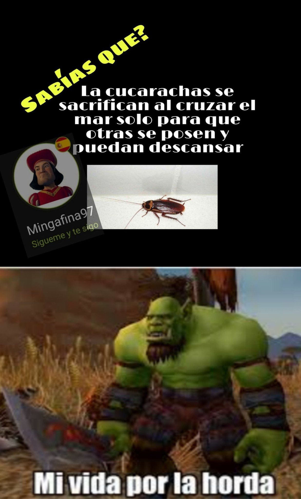 La horda - meme
