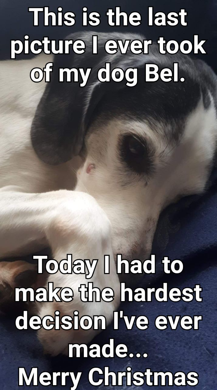 Today I lost my best friend in the whole world - meme