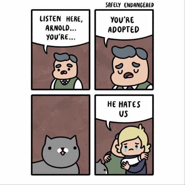 Cats hate everyone - meme