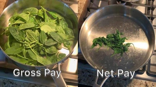 Gross pay vs net pay - meme