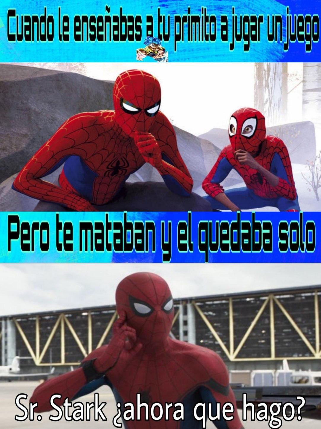 Sr. Stark ¿Ahora que hago? - meme