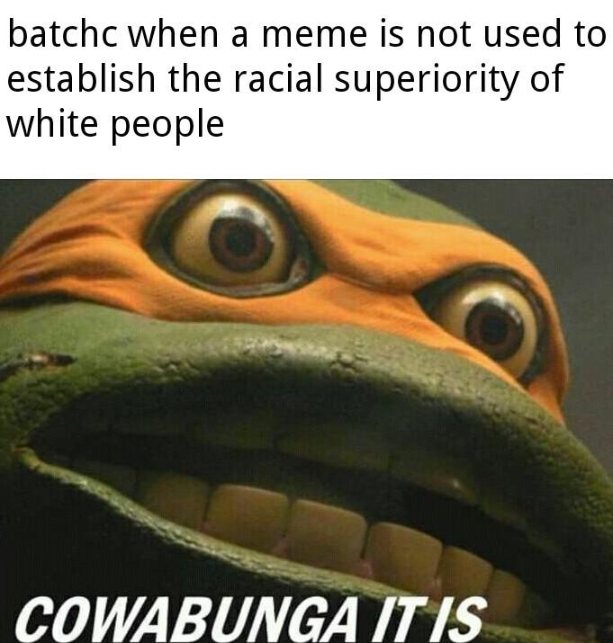 Cowabunga it is, niggercuck - meme