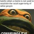 Cowabunga it is, niggercuck