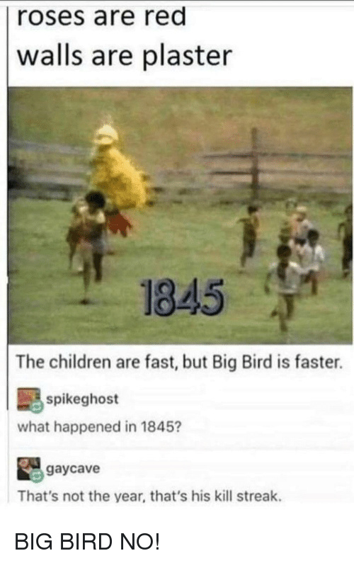 Big Bird will always win the race - meme