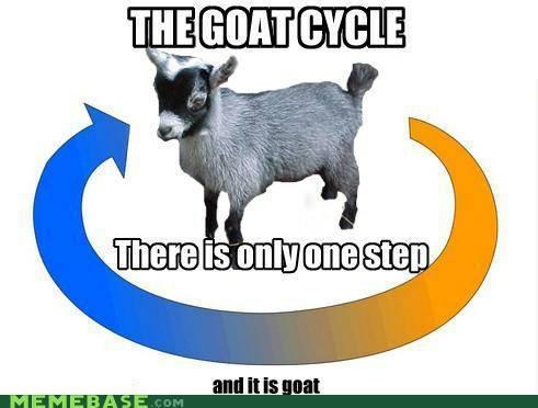 Goat - meme
