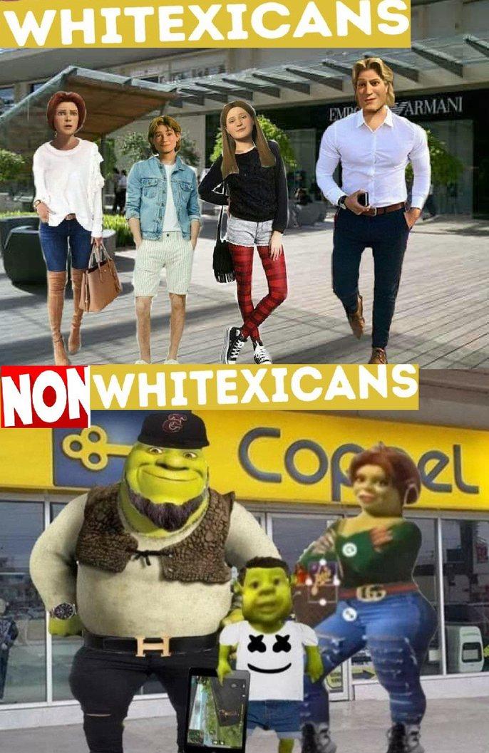 ¿Existe gente blaca en México? - meme