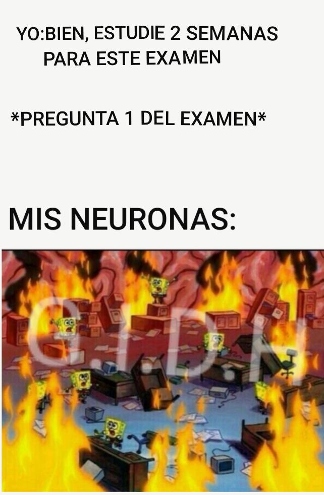 P*TO EL QUE LE DE NEGATIVO - meme
