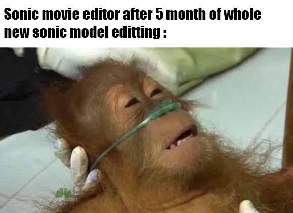 Sonic movie editor after 5 month of whole new Sonic model editting - meme