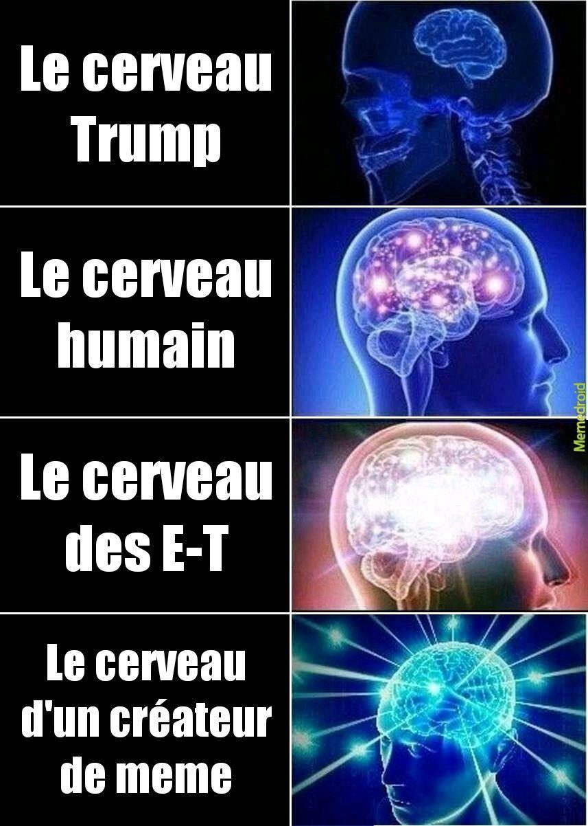 Les types de cerveaux - meme