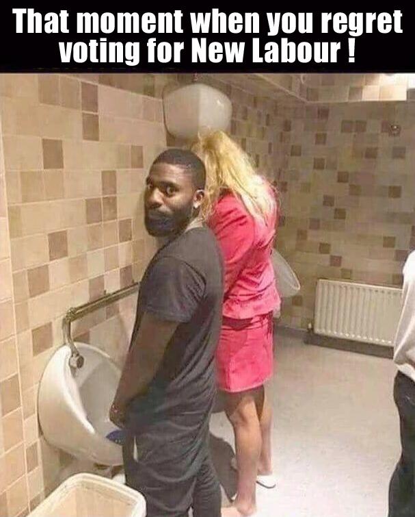 Transgender Toilet - meme
