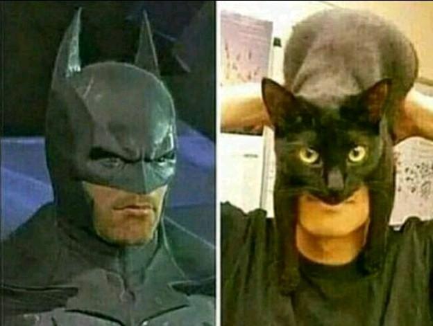 Thats not how batman looks like - meme