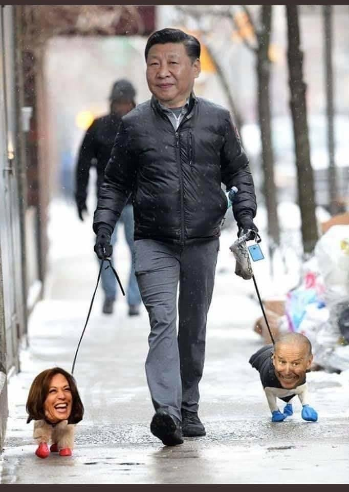 On Short Leashes From China - meme