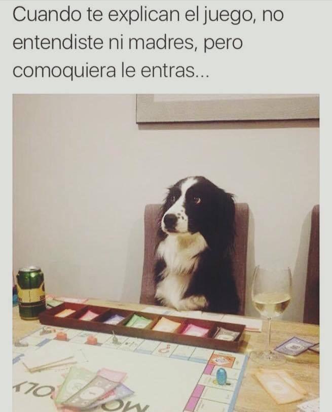 oie Phero khe zukulento - meme