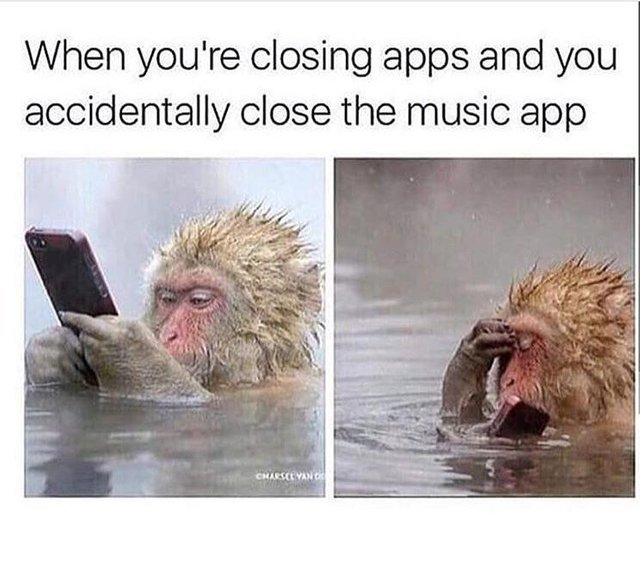 When you accidentally close the music app - meme