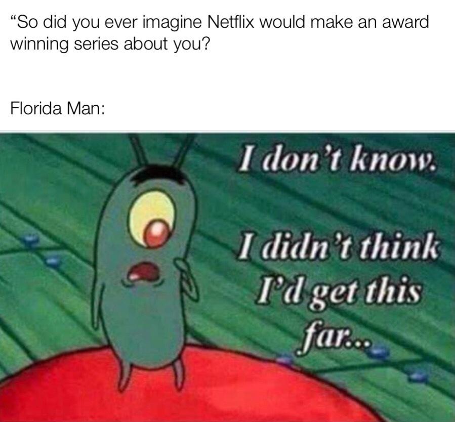 Netflix this is a Gold mine.. - meme