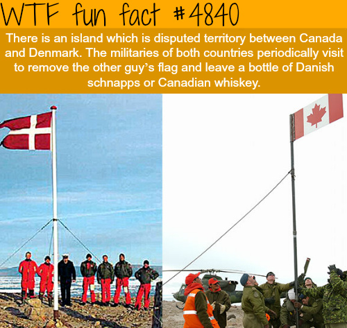 We are nice ppl Canadians and the Danish ppl. :D - meme