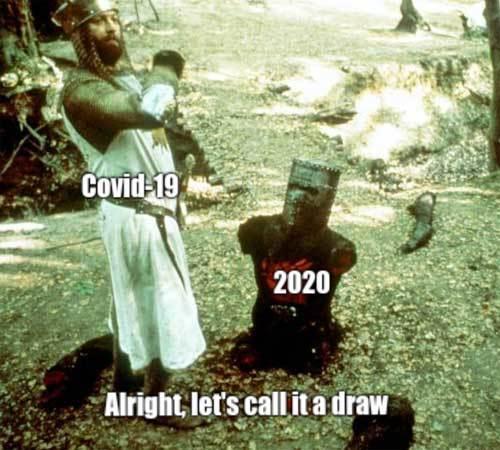 Covid-19 v 2020 - meme