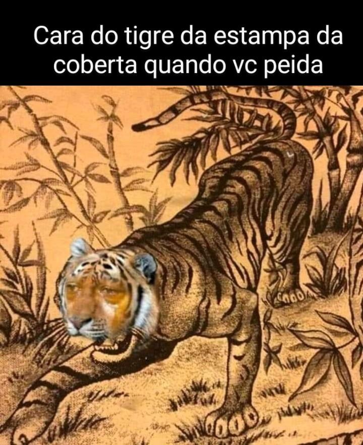 Pobre Tigrão - meme