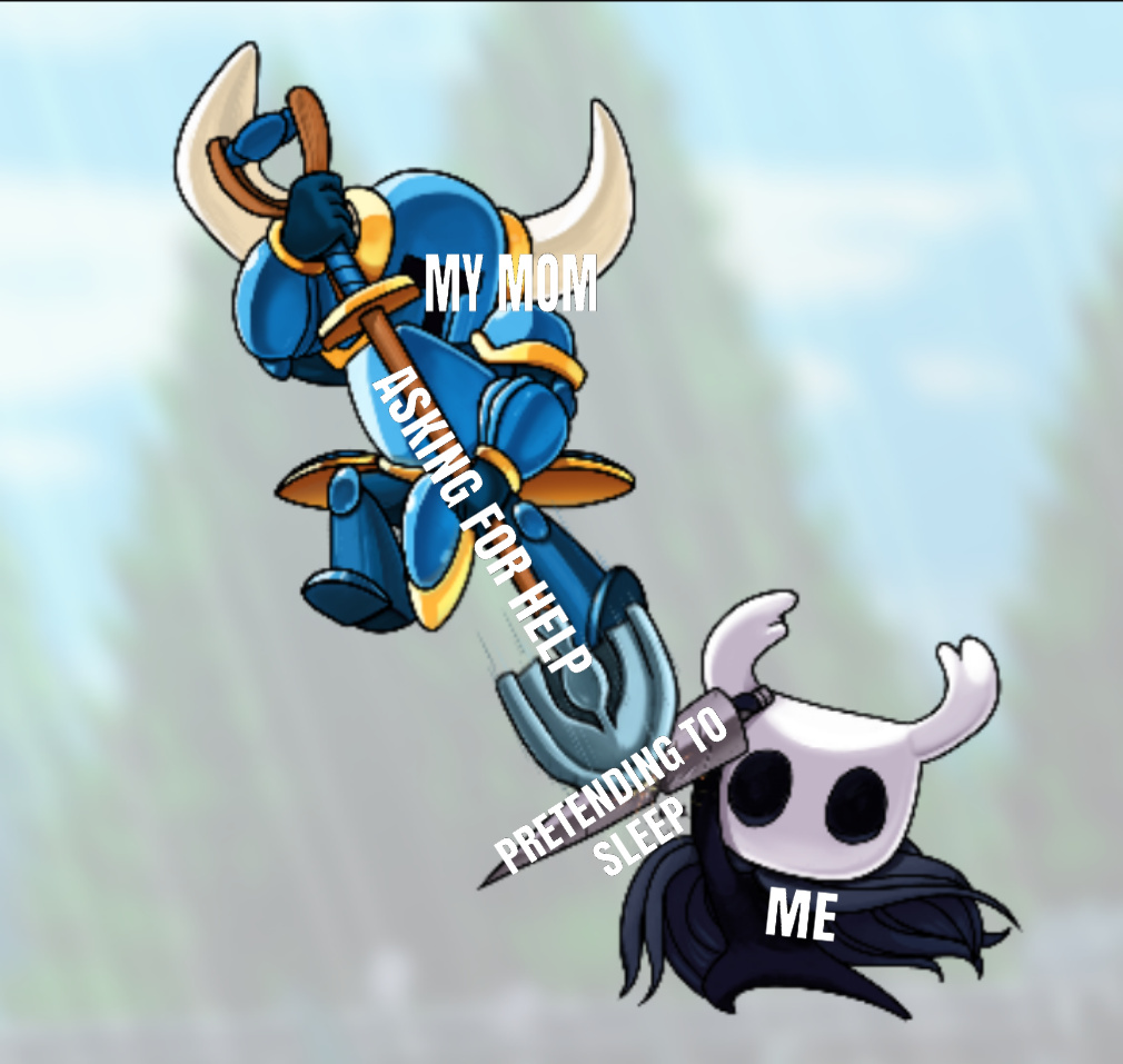 Should I get hollow knight - meme