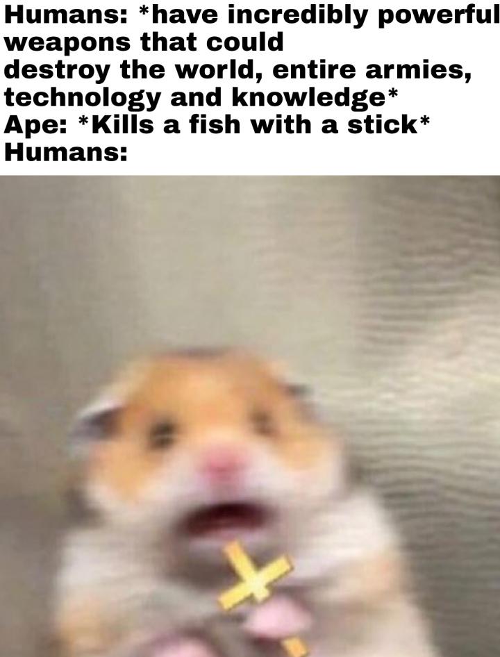 How I'm killing you - meme