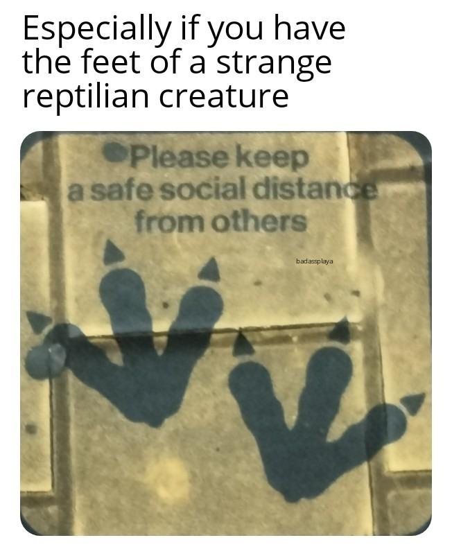 I don't want any Predators near me - meme