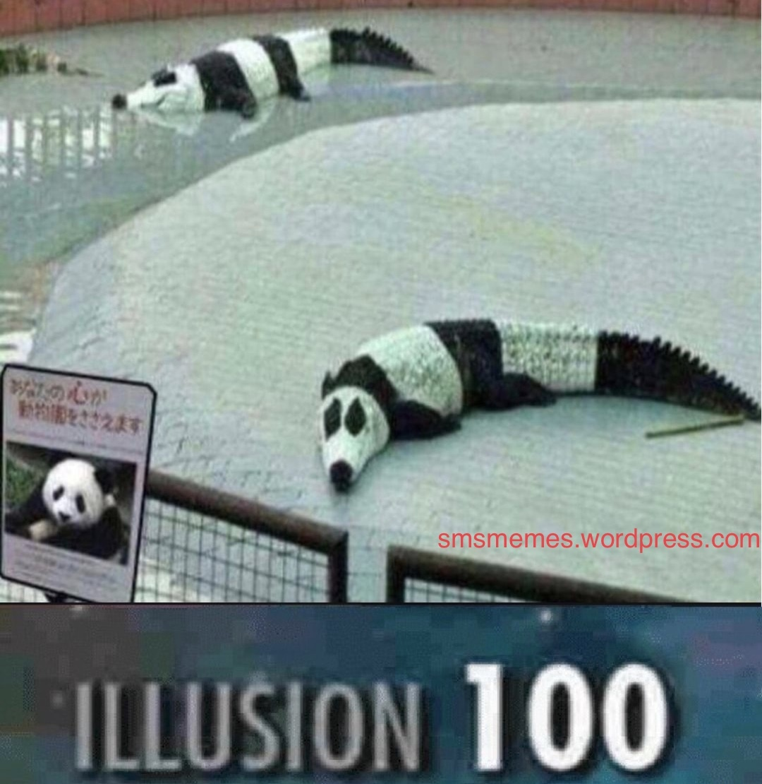 Illusion 100 Meme By Smsmemes Memedroid