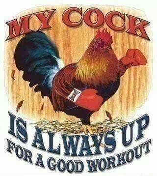 My cock wants to workout smileycreeper and obiwannablowme - meme