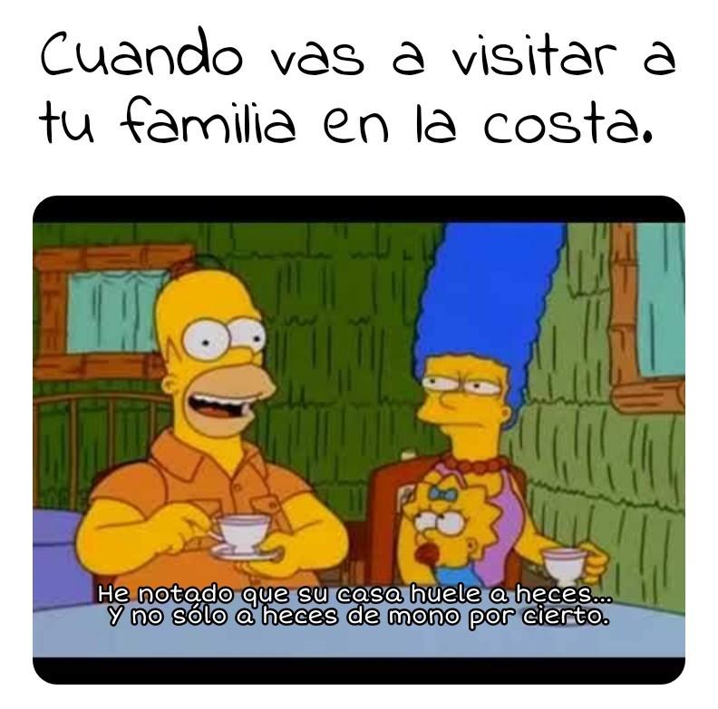 Homero de visita - meme