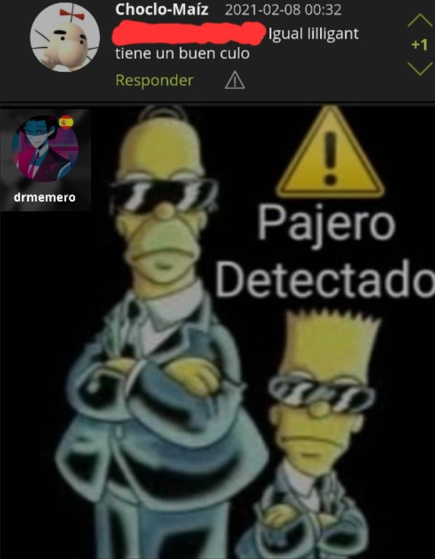 Pokefilico idiota Detectado - meme