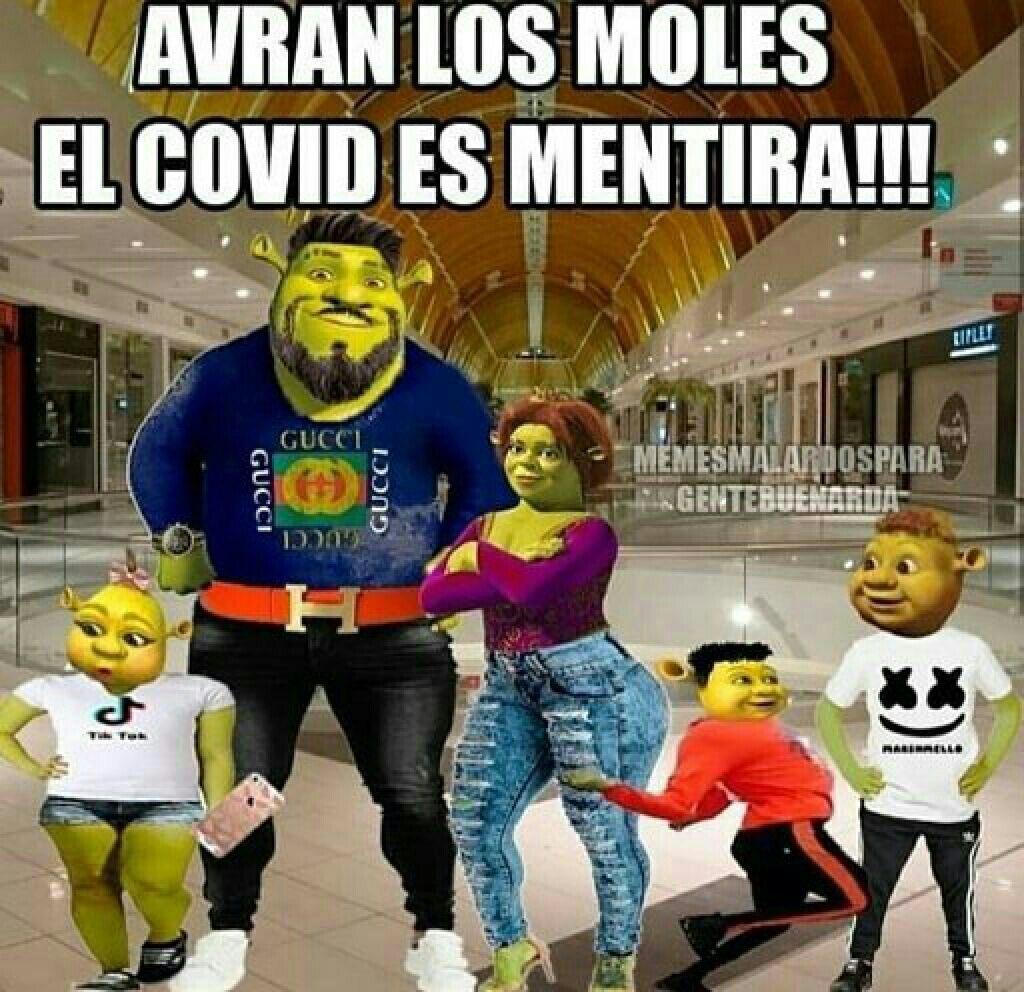 Shrek familia - meme