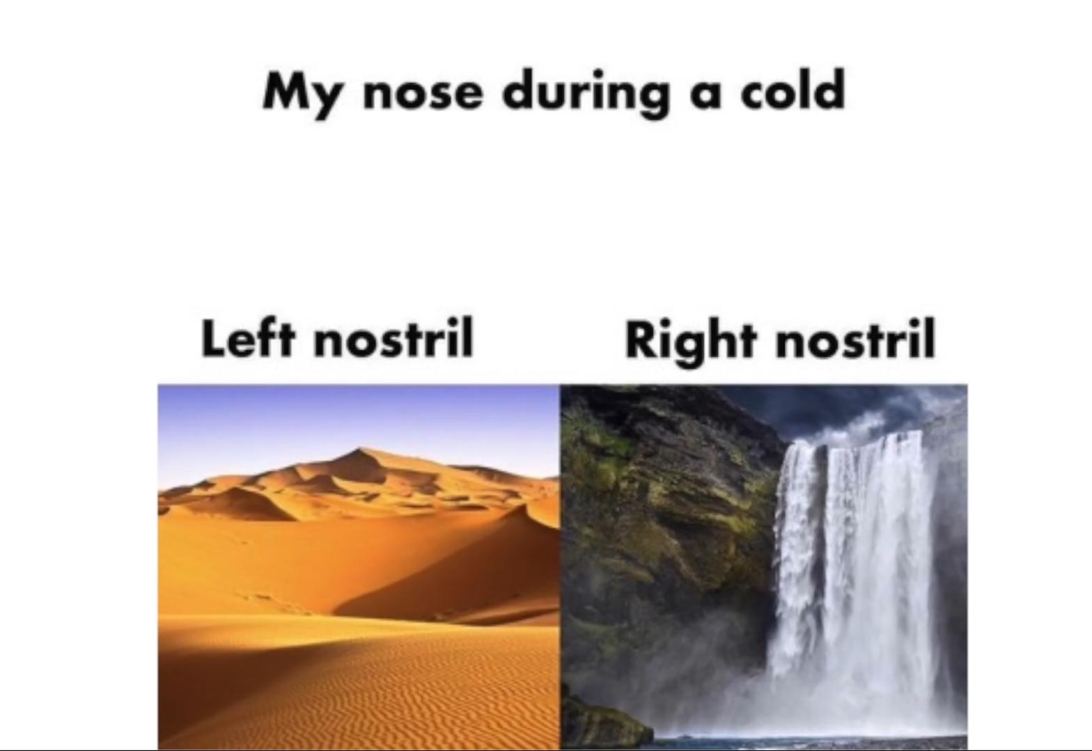 *sniffles* - meme