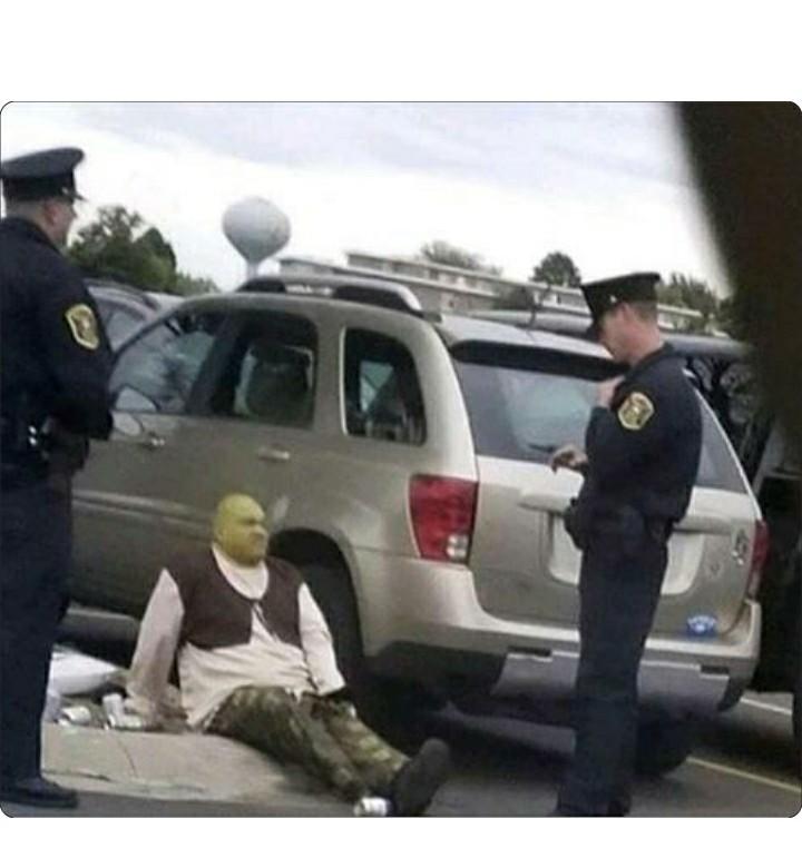 Mi ídolo siendo arrestado - meme
